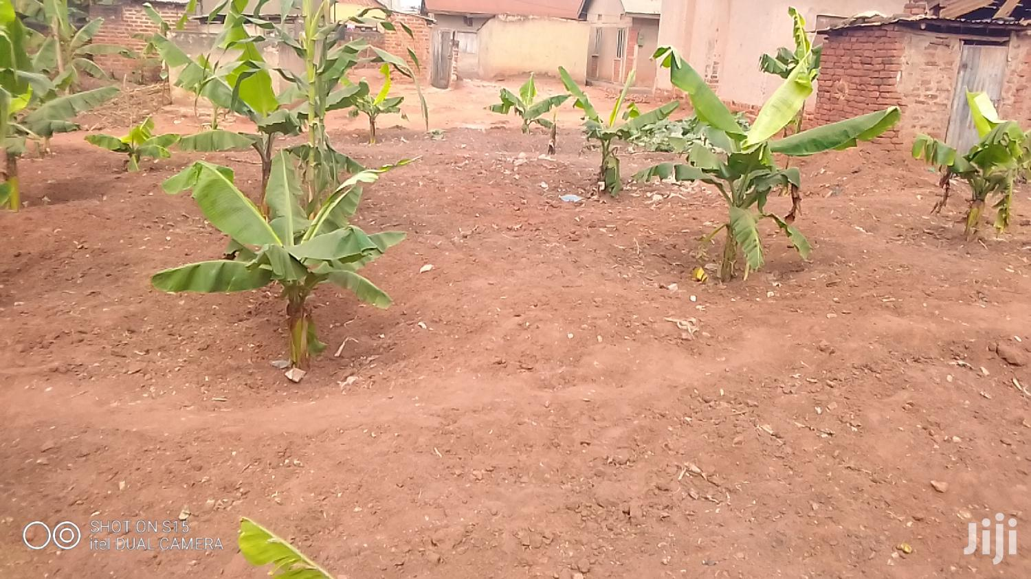Land on Iganga Highway for Rent Annually | Land & Plots for Rent for sale in Iganga, Eastern Region, Uganda