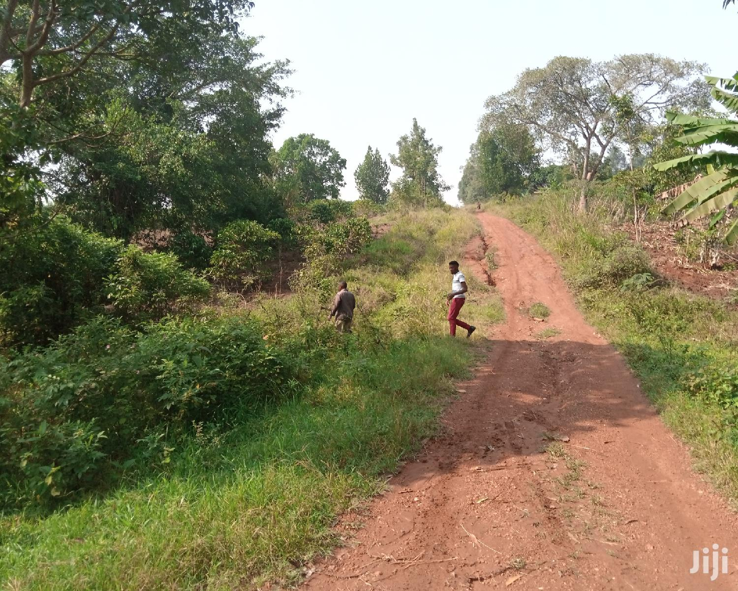 1 Acre Land For Sale In Kyenjovu Kinoni (1 - 100 Acres)