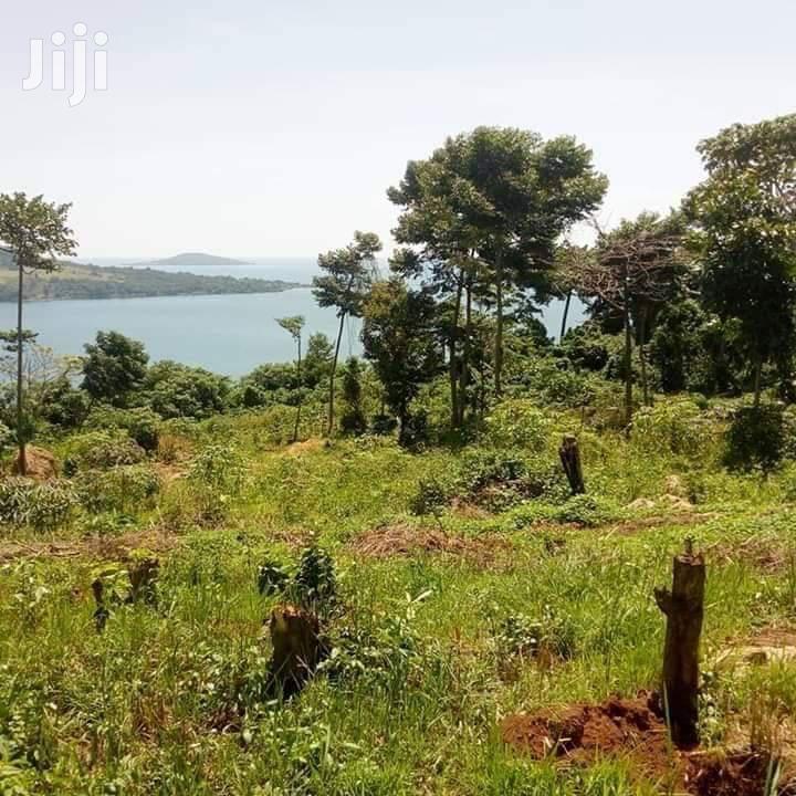 200 Acres for Sale in Ssi Buikwe | Land & Plots For Sale for sale in Kampala, Central Region, Uganda