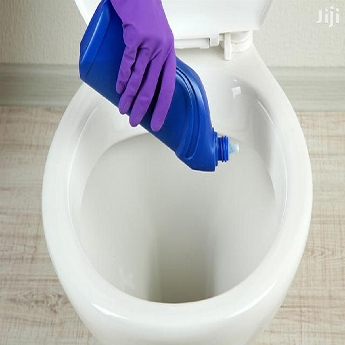 Toilet Bowl Cleaner (HARPIC) Training