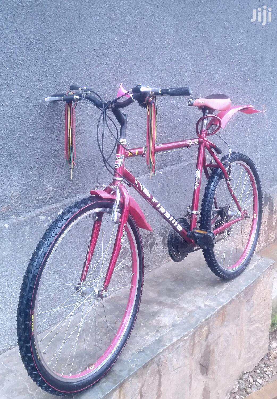 Mountain Bike / Sport Bike
