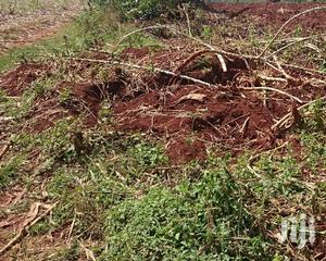 FREE HOLD Titled Land 5 Square Miles | Land & Plots For Sale for sale in Eastern Region, Soroti