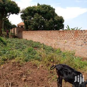 Hot Deal Plot For Sale In Bweya Kajjansi  | Land & Plots For Sale for sale in Central Region, Kampala