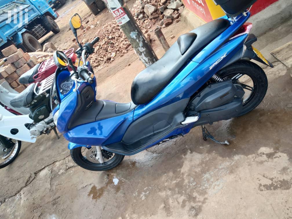 Archive: Honda 2014 Blue