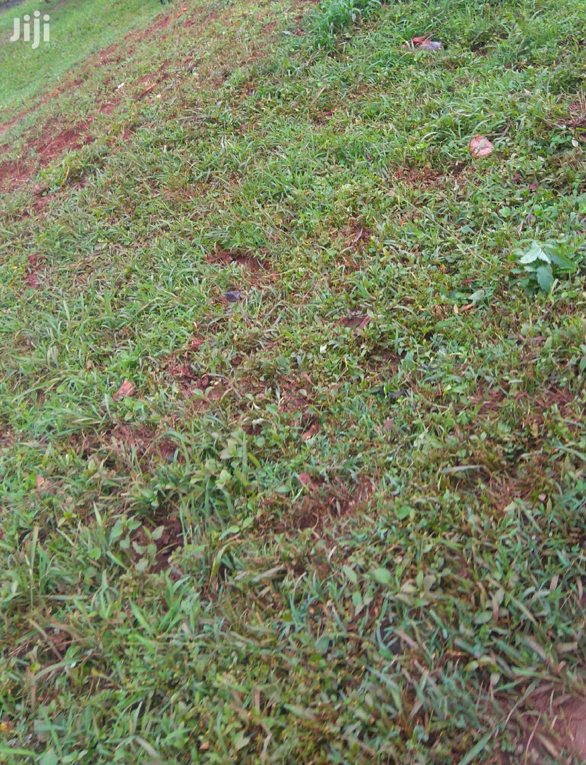 1 Acre Land Available in Kiwatule for Sale