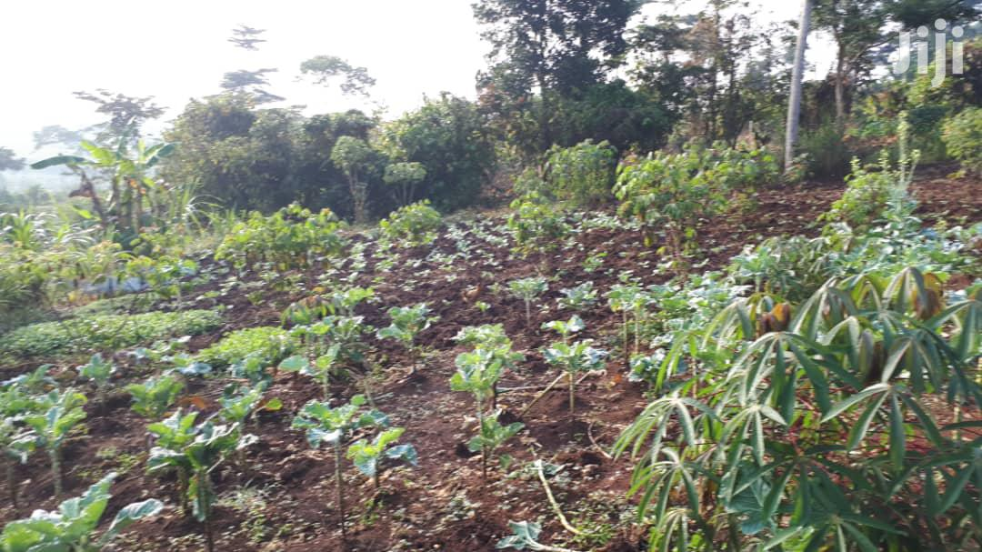 Farmland for Quick Sale | Land & Plots For Sale for sale in Mukono, Central Region, Uganda