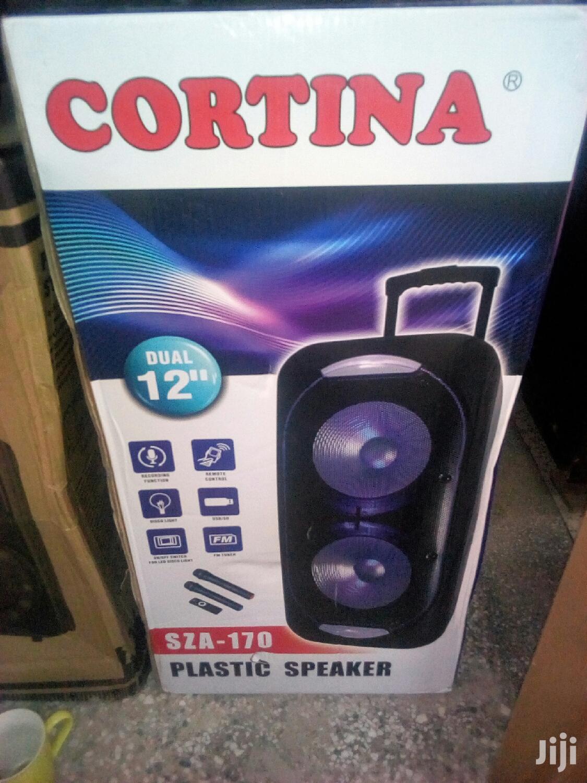 Amplified Speaker