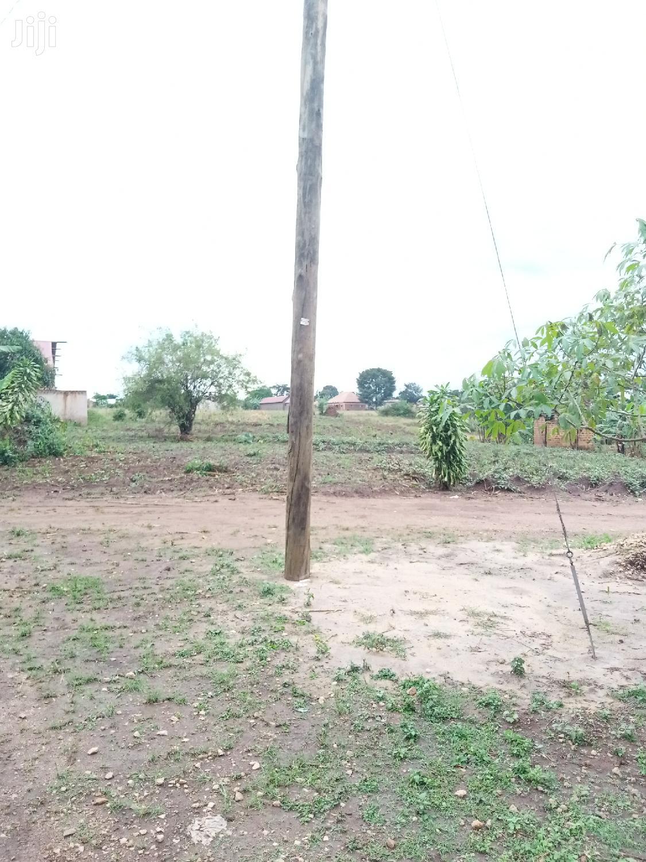 Plots at Busula Town for Kats and Deo Surveys LTD