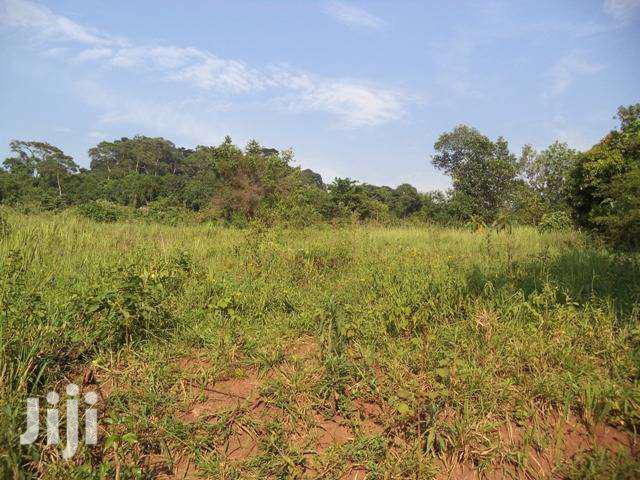 Archive: Land In Kawuku Bukasa For Sale