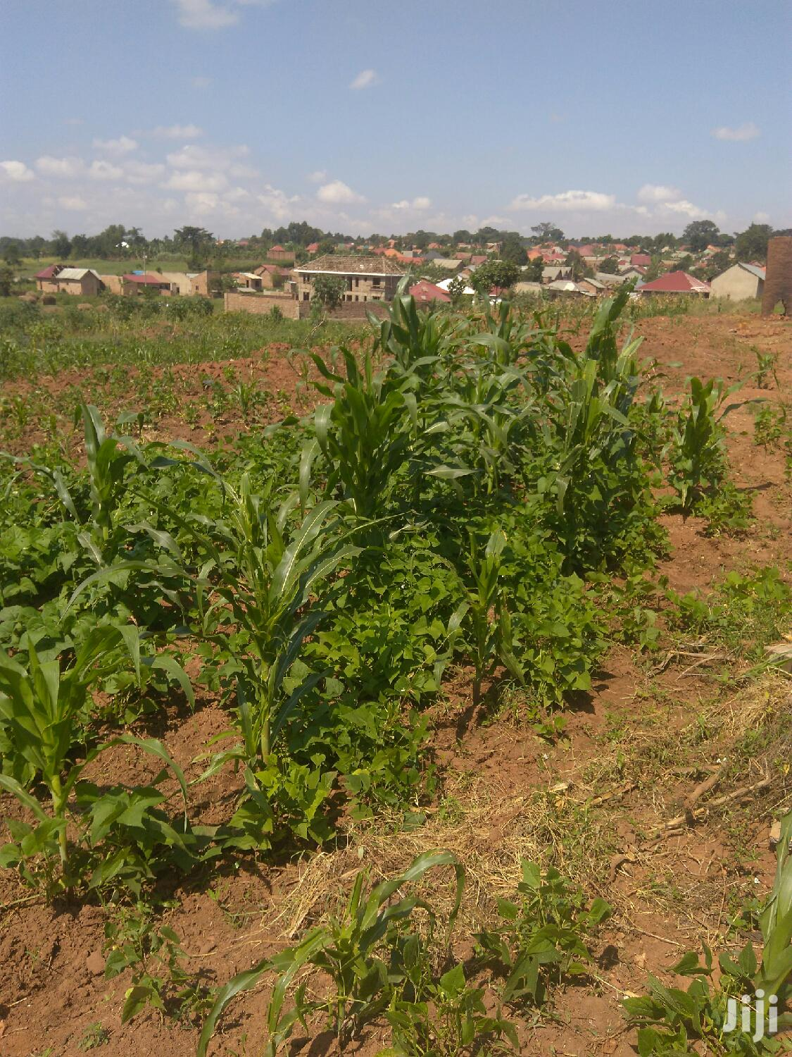 1 Acre Land In Kayebe Gayaza For Sale