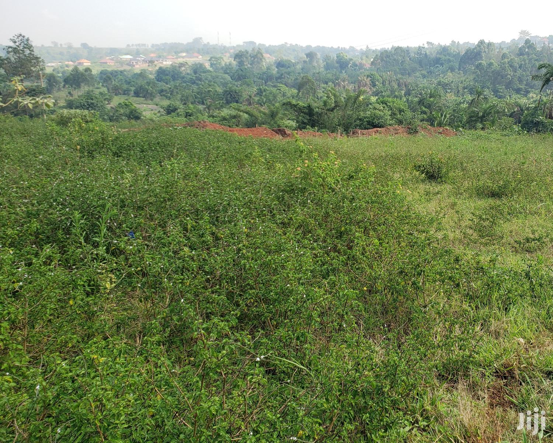 Land Available at Bujjuko