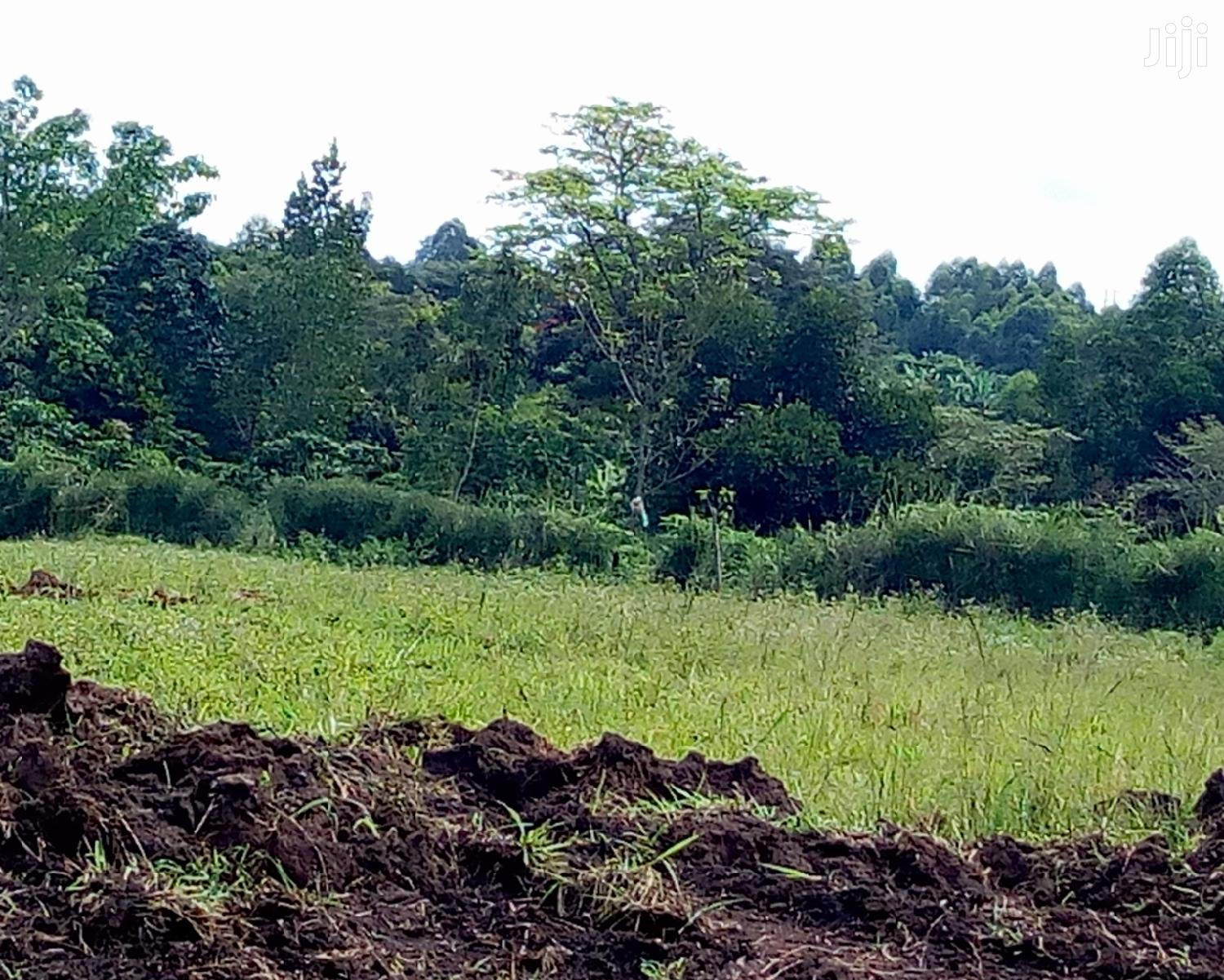 Land Available at Gobero
