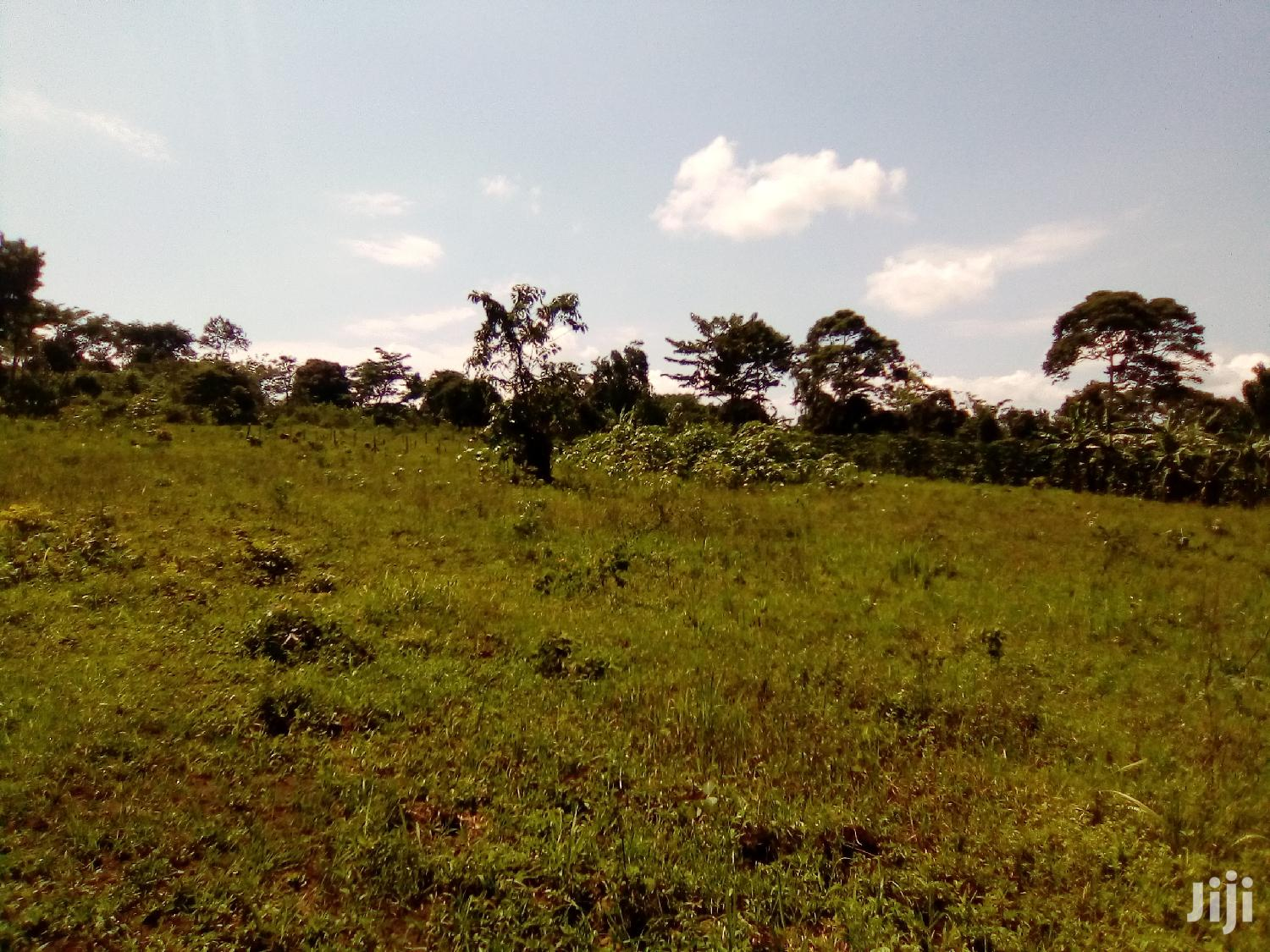 Land For Sale In Mukono Kabembe | Land & Plots For Sale for sale in Mukono, Central Region, Uganda