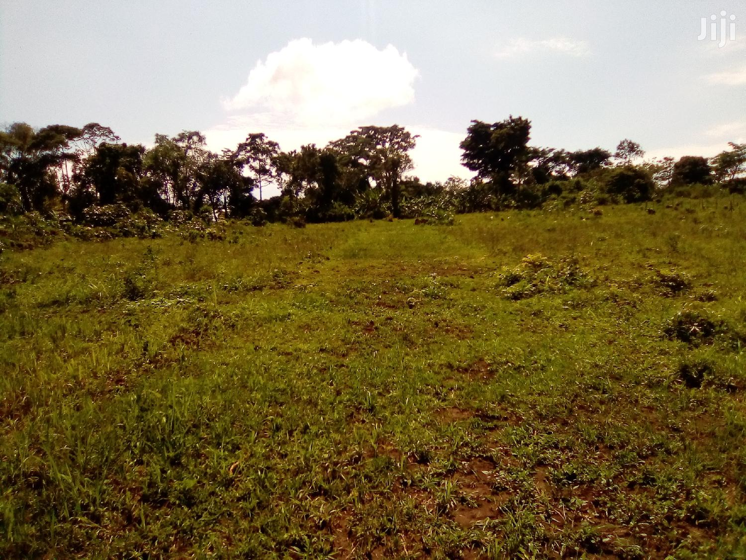 Land For Sale In Mukono Kabembe