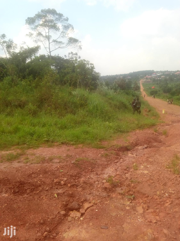 Plots in Kibanja