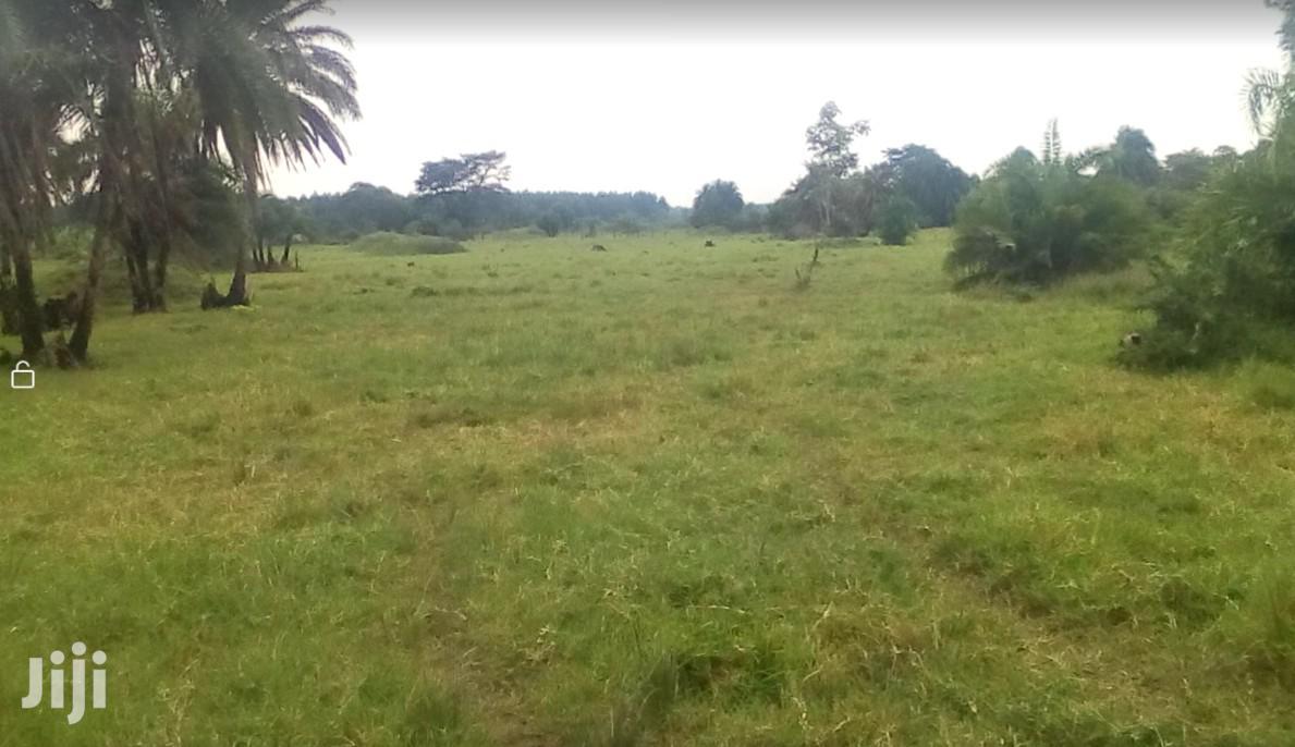 Titled Farm Land