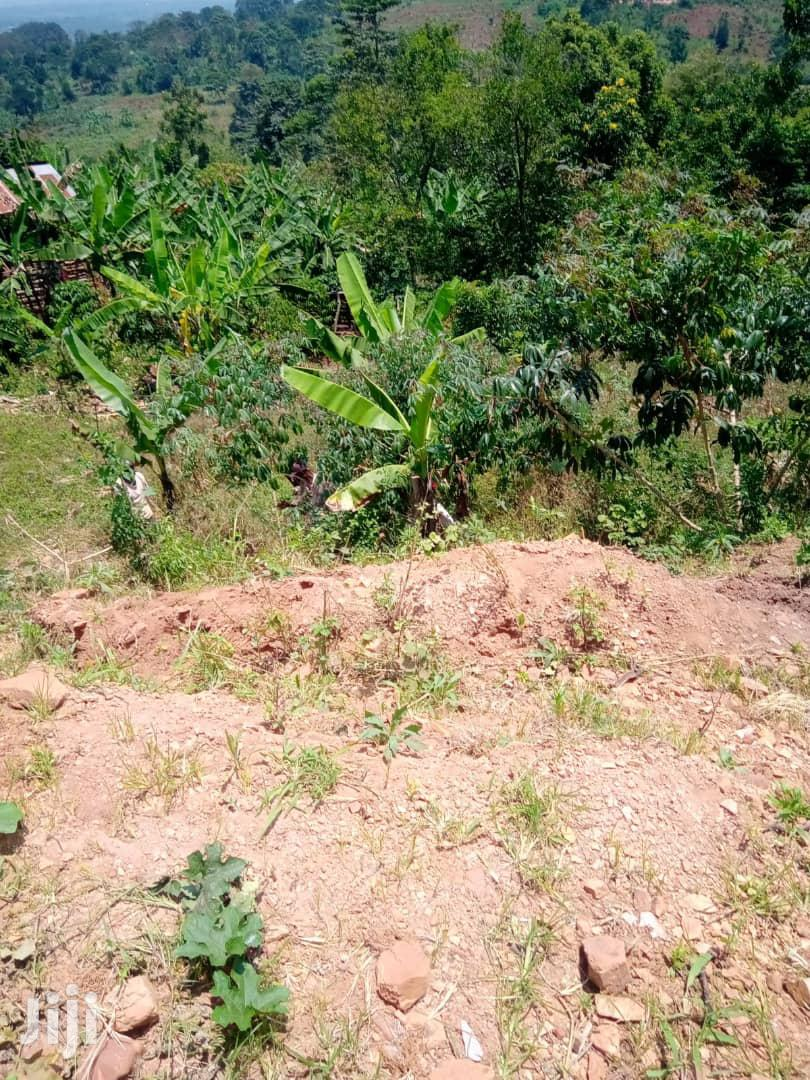 Land In Namataba Mukono For Sale