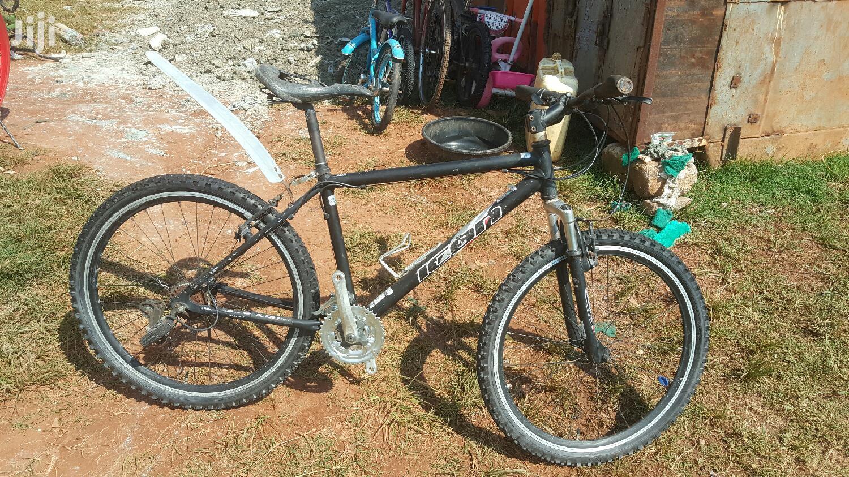 Archive: Japan Used Mountain Bike