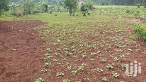 2 Acres Of Land For Sale In Mukono Kayanja | Land & Plots For Sale for sale in Central Region, Kampala