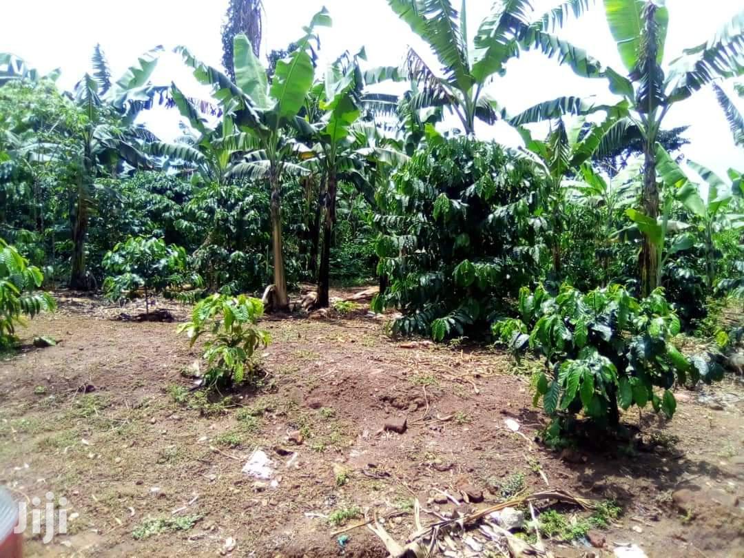 17 Acres Of Land In Mukono Namaliga For Sale