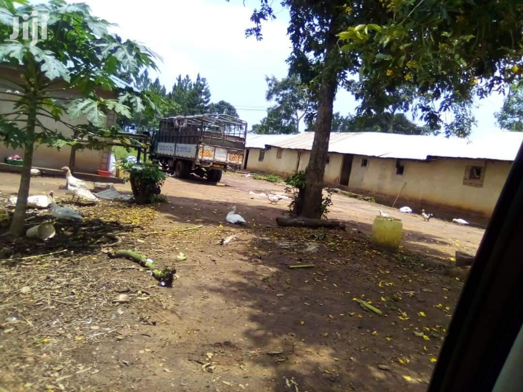 17 Acres Of Land In Mukono Namaliga For Sale | Land & Plots For Sale for sale in Kampala, Central Region, Uganda