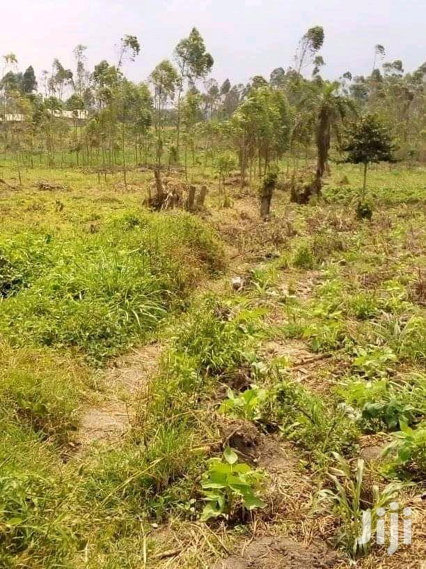 Land In Mityana For Sale