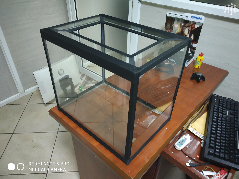 Archive: Home Aquarium