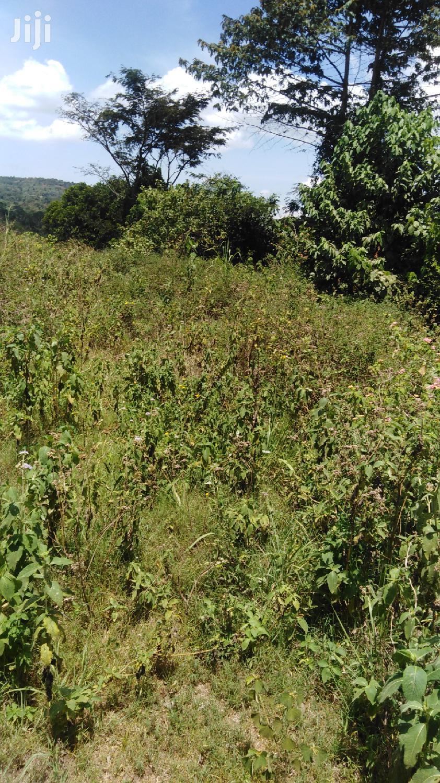Titled Farm Land In Tajari, Bukedea
