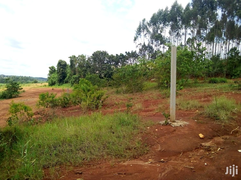 15 Decimals Land For Sale | Land & Plots For Sale for sale in Kampala, Central Region, Uganda