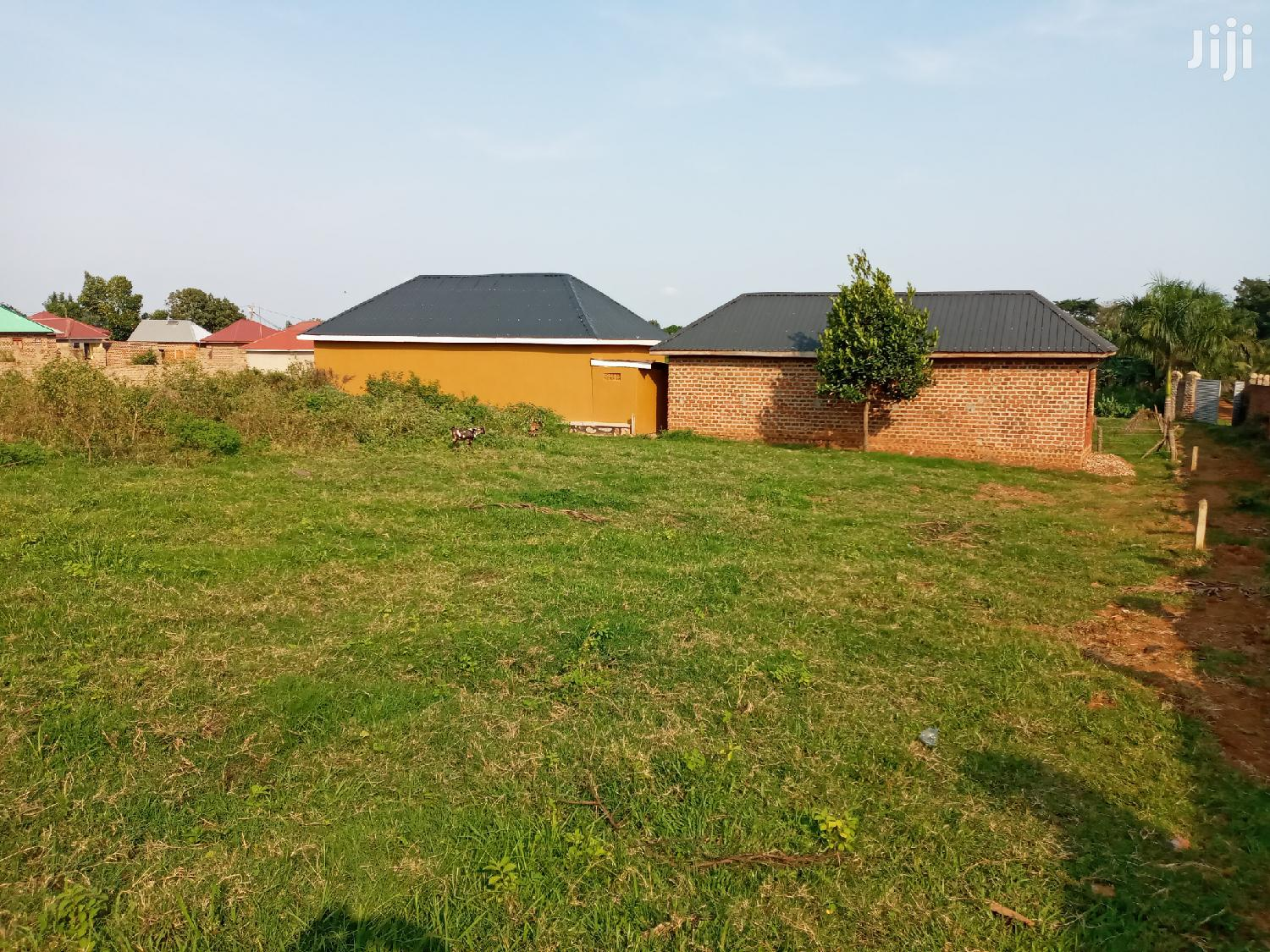 Very Sweet Plot On Forcedsale After Munyonyo On Ntebe Expres | Land & Plots For Sale for sale in Kampala, Central Region, Uganda