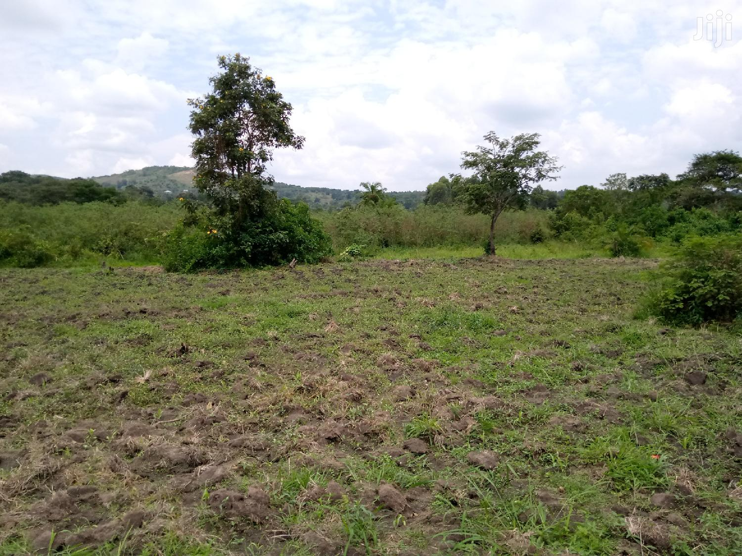 Agricultural Land at Busunju.6.35acres