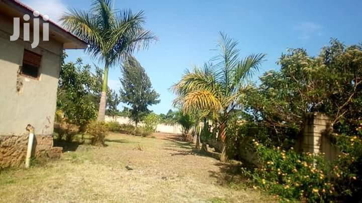 Entebbe Road Lutembe: School Building for Sale