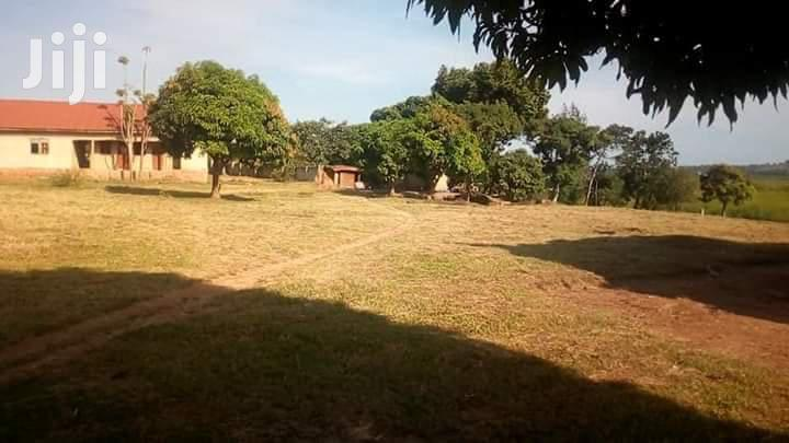 Entebbe Road Lutembe: School Building for Sale | Commercial Property For Sale for sale in Kampala, Central Region, Uganda