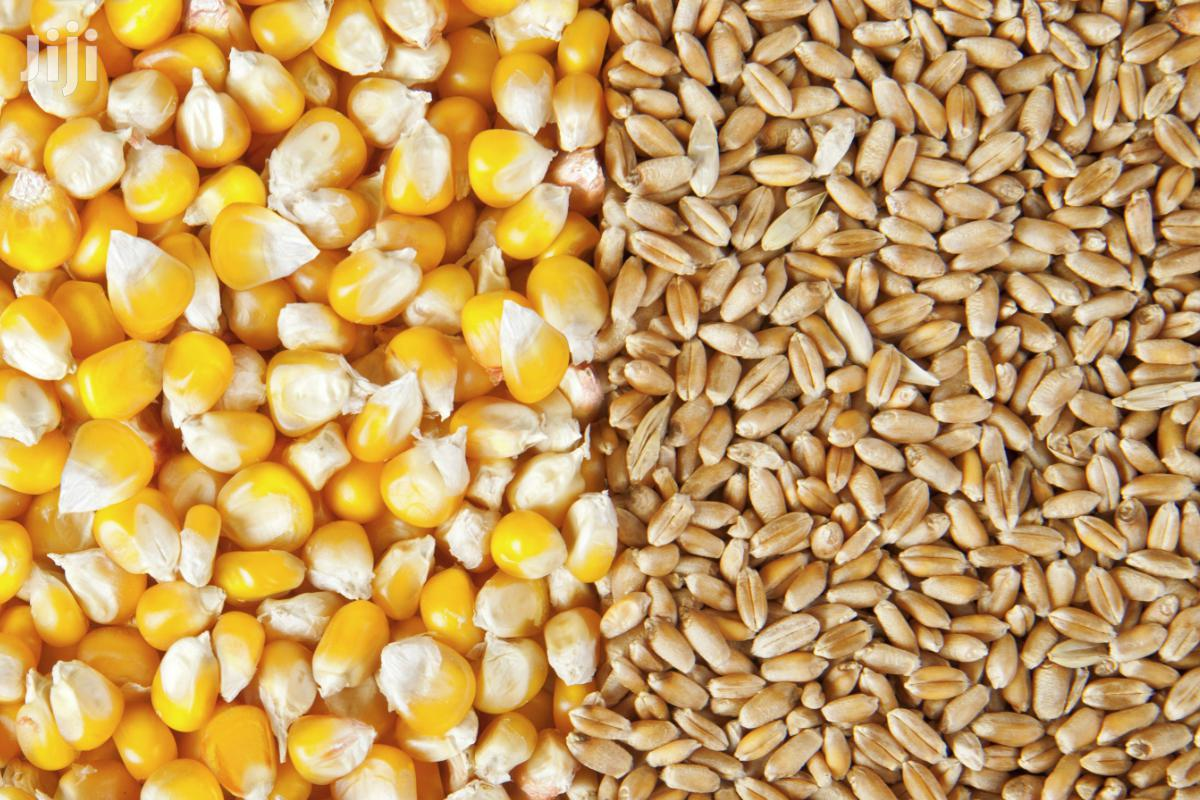 Grain Milling And Other Agro Processing Services | Manufacturing Services for sale in Kampala, Central Region, Uganda