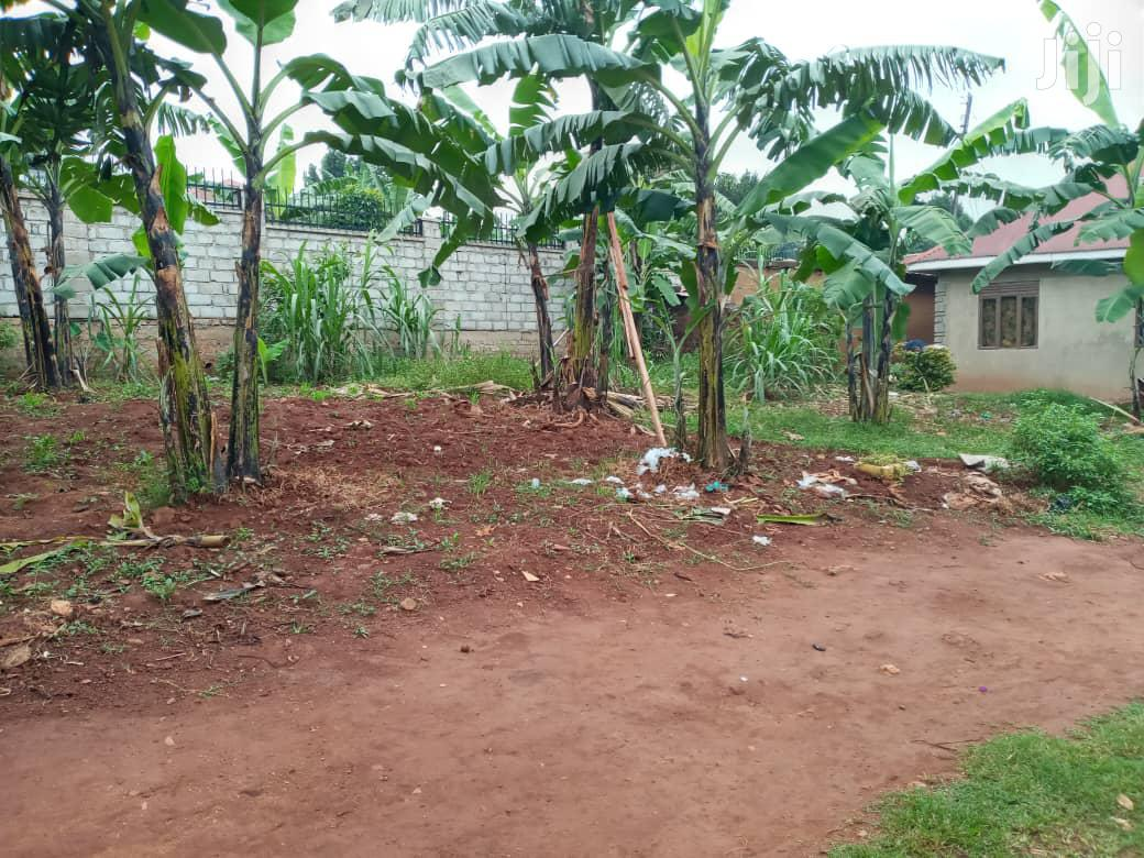 Archive: Beautiful Hot Land In Buziga For Sale