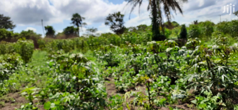 300 Acres Of Farmland In Nakaseke Kalagala For Sale