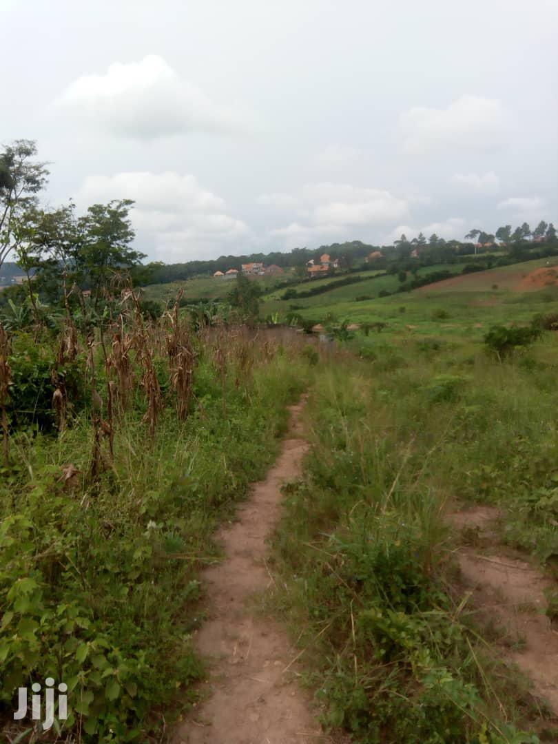 30 Acres Land in Mukono Mbalala for Sale | Land & Plots For Sale for sale in Kampala, Central Region, Uganda