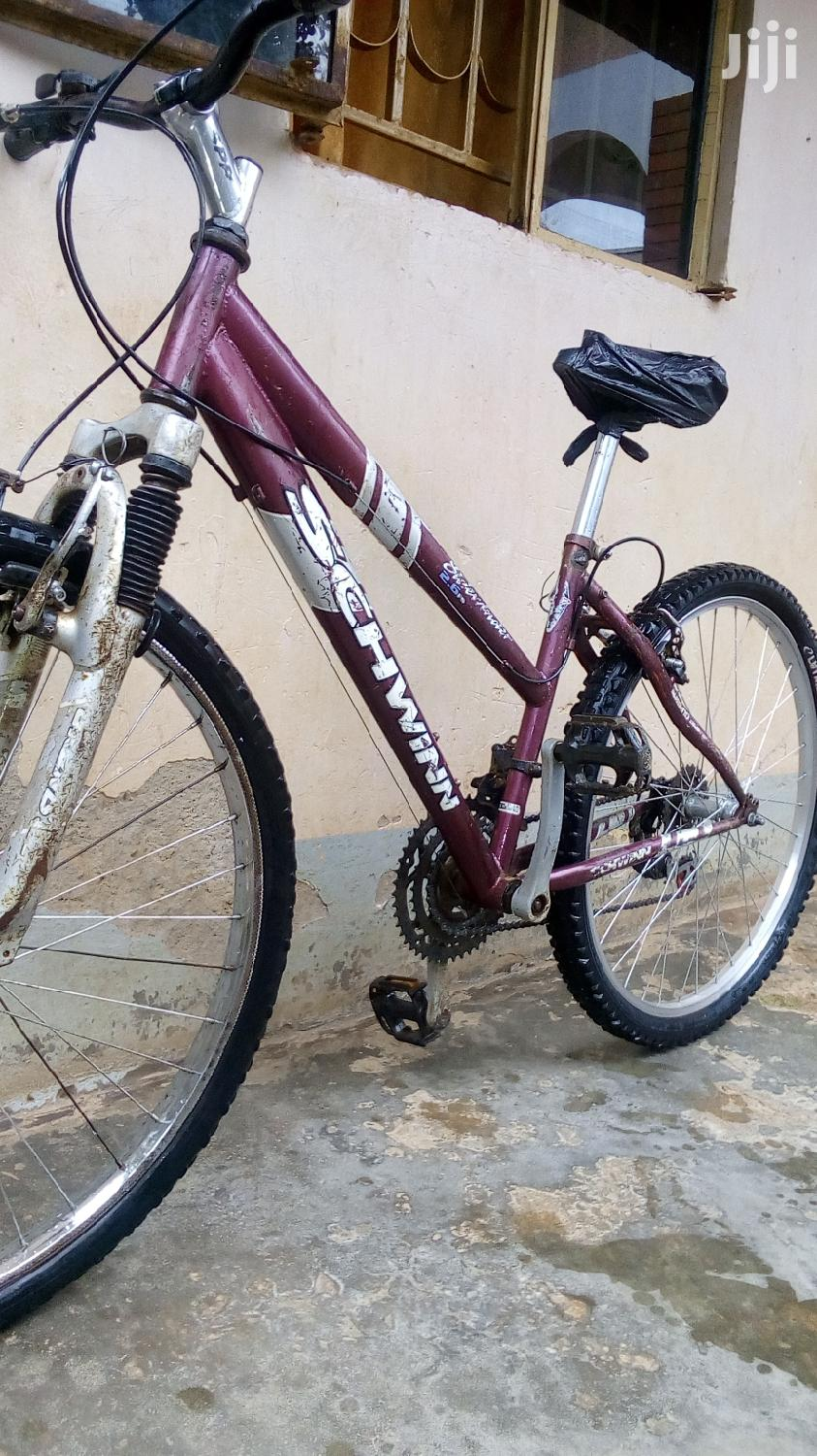 Archive: Nice Bicycle