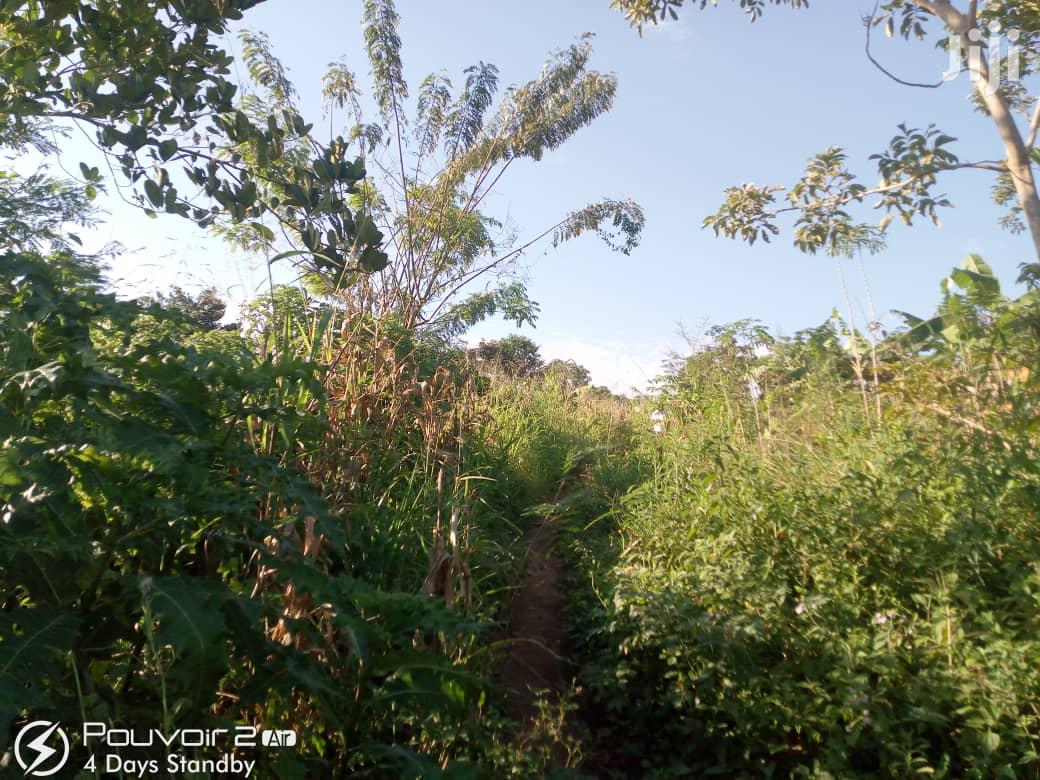 2 Acres Of Land In Manzi Kiwebwa Matugga For Sale | Land & Plots For Sale for sale in Kampala, Central Region, Uganda