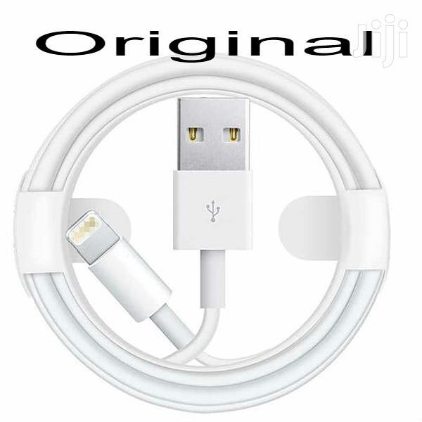 Original iPhone USB Charger