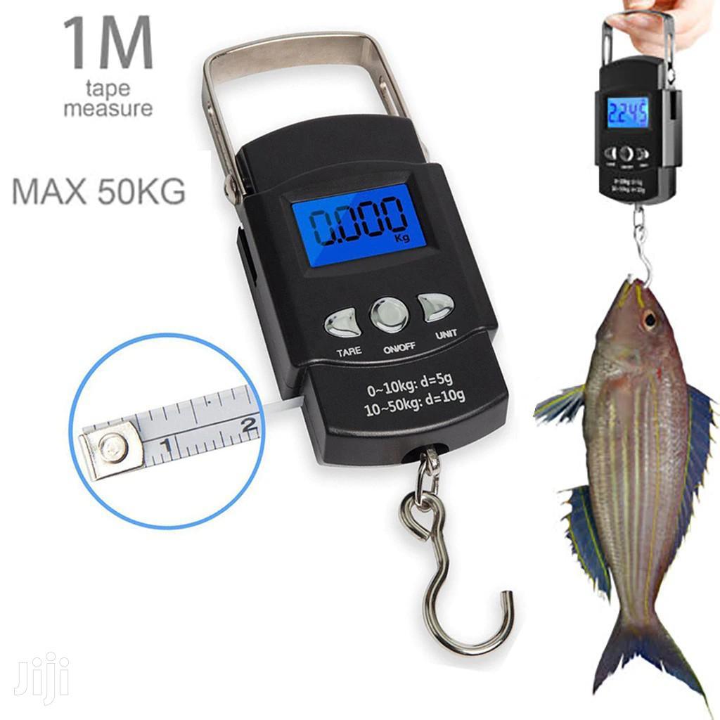 Fish Hanging Balances
