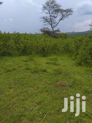 Very Sweet 100 Acres Gd For Mixed Farming At Give Away Price | Land & Plots For Sale for sale in Central Region, Kampala