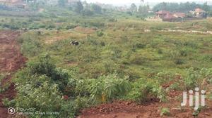 Bank Sale Land For Sale In Masaka Kalisizo