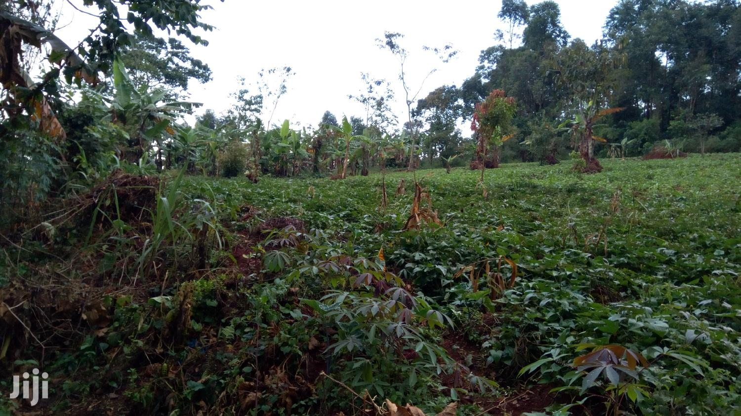 2 Acres Land In Mukono Kisogga For Sale | Land & Plots For Sale for sale in Mukono, Central Region, Uganda