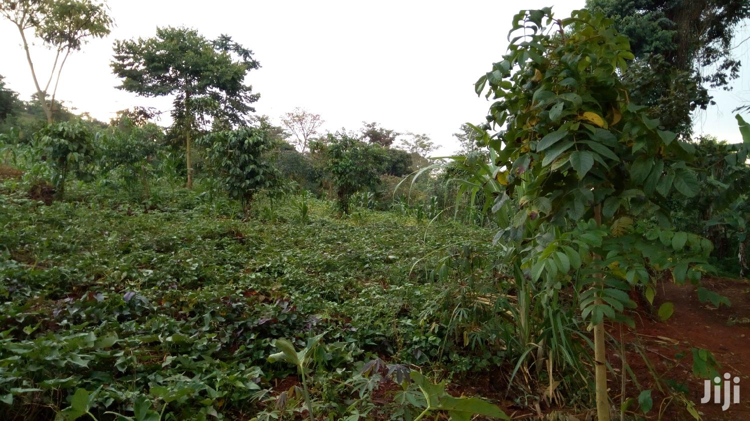 2 Acres Land In Mukono Kisogga For Sale