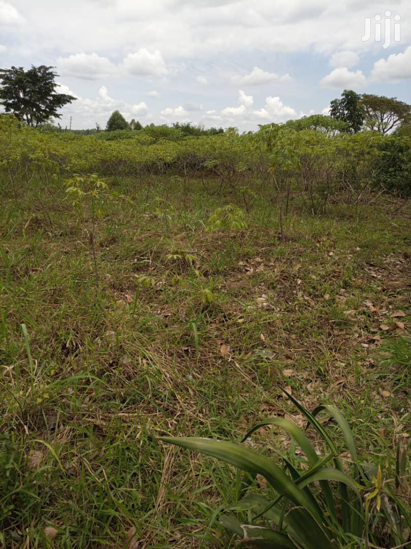 Land For Sale In Mukono Nkokonjeru