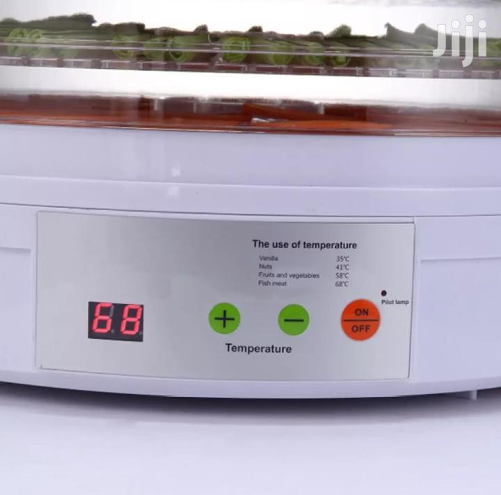 Top Healthy Food Dryer