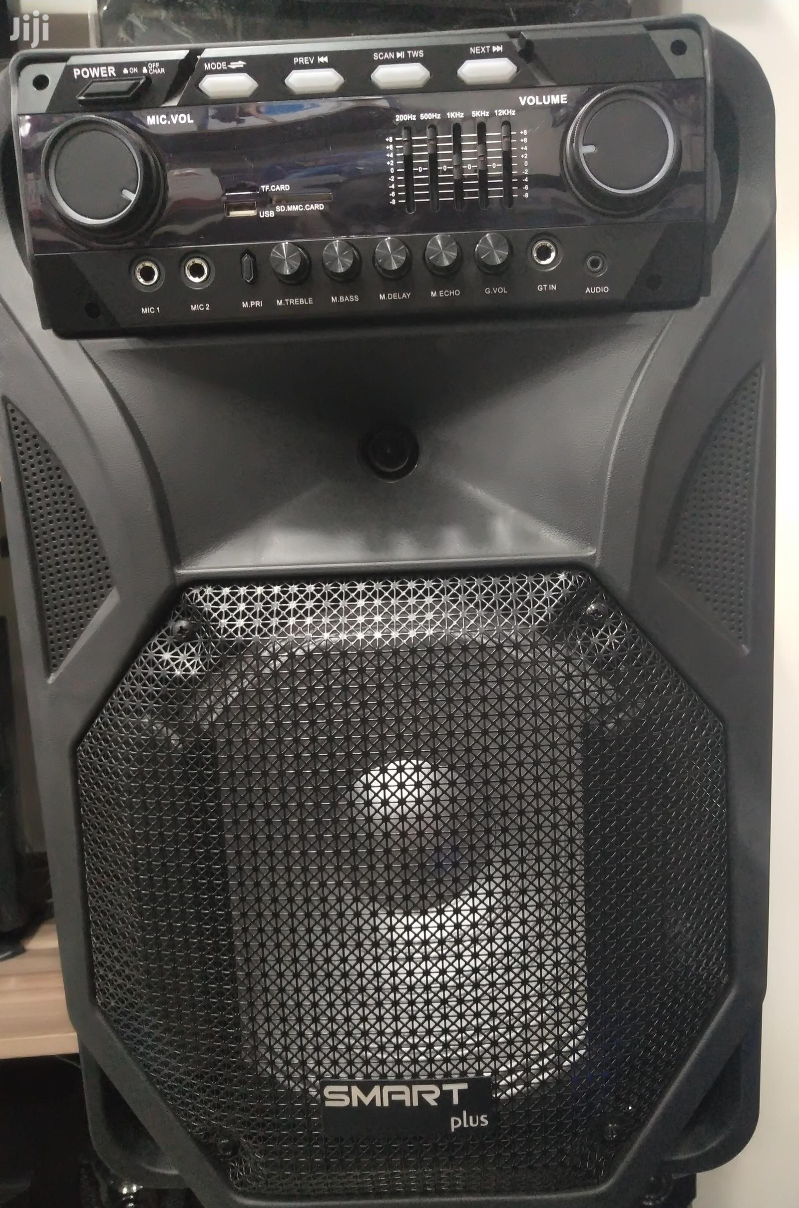 Rechargeable Wireless Microphone Speaker