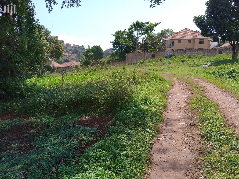 Land In Buziga