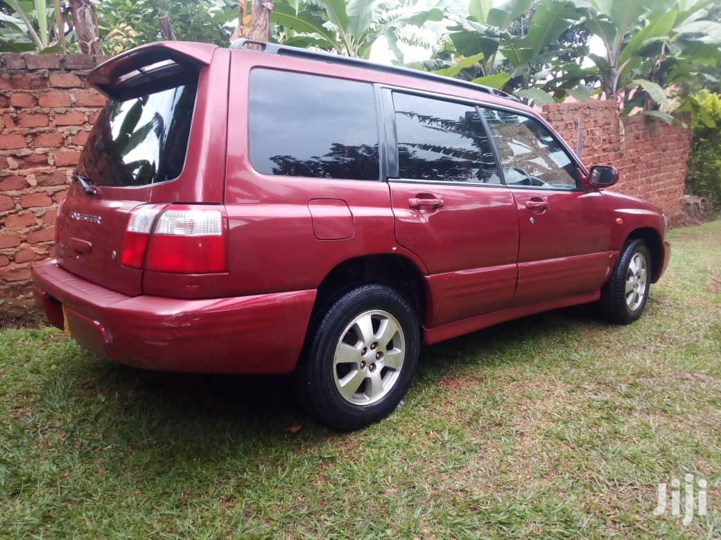 Archive: Subaru Forester 1998 Red